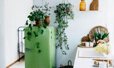 ideas-decorar-casa-de-campo